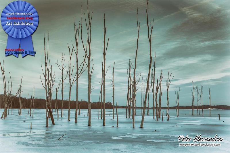 Landscape 2015 Manasquan