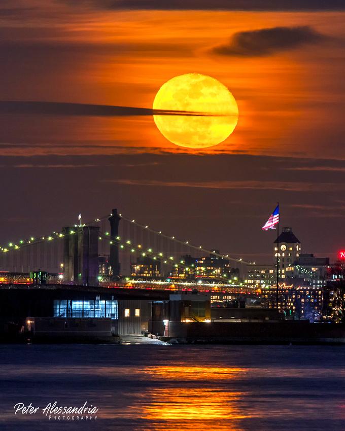 Wolf Full Moon Brooklyn Bridge