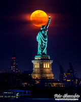 New York City Moon
