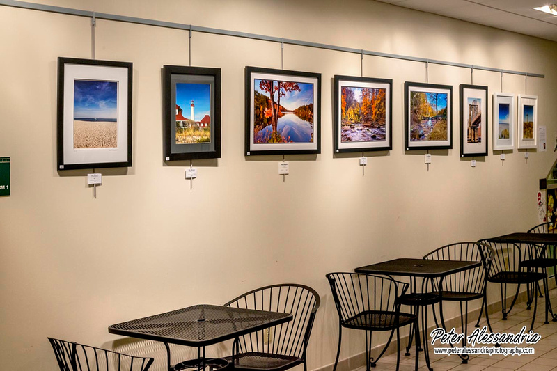 Parsippany Library Fine Art Display